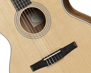 Bild för kategori Nylonsträngade gitarrer