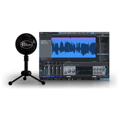 Bild på Blue Microphones Snowball Studio