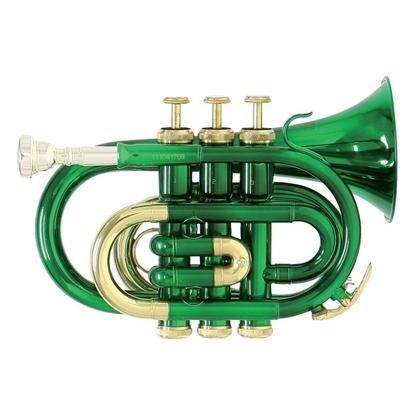 PT101-green