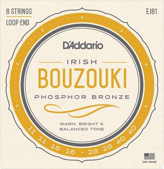 Bild på D'Addario Bouzouki Irish 011-040 EJ81