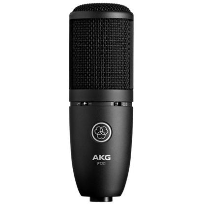 Bild på AKG P120 General Purpose Recording Microphone