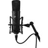 Bild på Warm Audio WA-87 R2 – Black Kondensatormikrofon